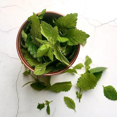 lemon balm for hydrosol