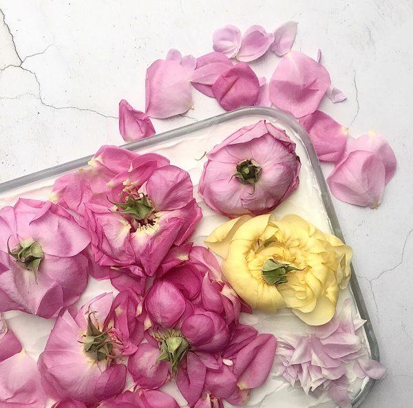 rose enfleurage